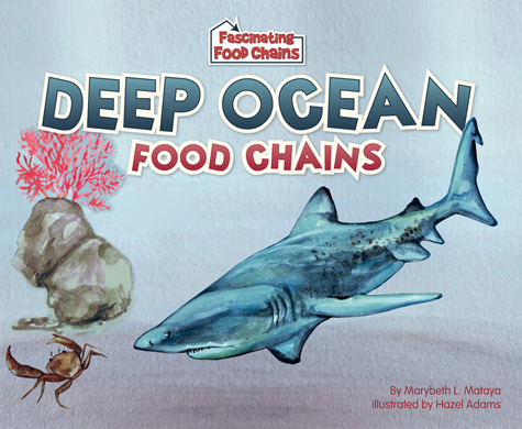 Deep Ocean Food Chains