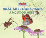 What Are Food Chains and Food Webs?
