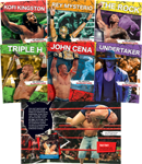 Pro Wrestling Superstars Series
