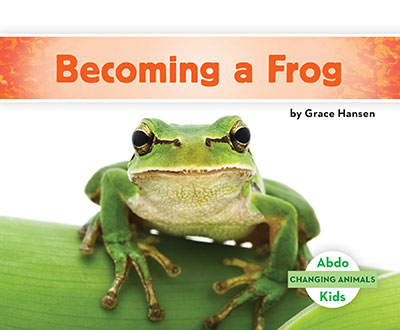 Becoming a Frog