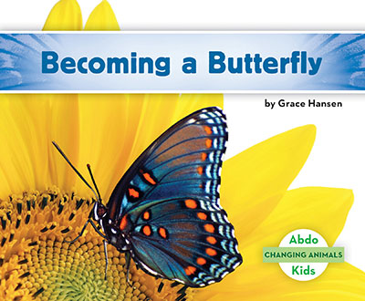 Becoming a Butterfly